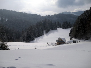 Pictures with winter theme 003
