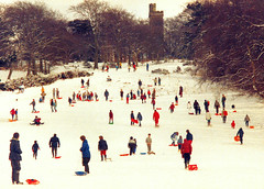 Having fun in the snow, Edinburgh, Scotland (M McBey) Tags: edinburgh scotland winter snow people snowboard sled white enjoyment leisure corstorphine corstorphinehill sledging