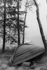Wintersleep (Janne Räkköläinen) Tags: boat rowboat row upsidedown winter talvi finland suomi lipe liperi northkarelia saimaa saimaalake savonselkä lake water tree forest blackwhite bnw bw nature naturelovers outside wintersleep wai waiting