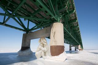 _DSC3932 Mackinac Bridge Troll