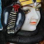 Maha Shivaratri (11)