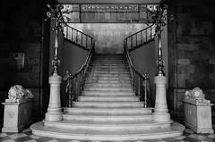 Guardianes de la entrada (flea_14) Tags: mexico cdmx architecture arquitectura castillo chapultepec escalera chair lions sculpture esculturas marmol black white blackandwhite