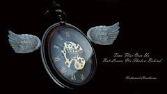 Time Flies (Jim DeFazio) Tags: saying quote nathanielhawthorne wordsofwisdom text watch pocketwatch timepiece wings timeflies timeflys time knowledge