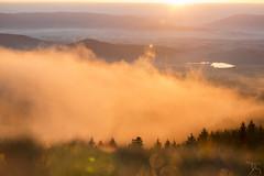 18022018-Toine005-2 (Morvan Photo Nature) Tags: brume flare leverdesoleil montbeuvray morvan paysage