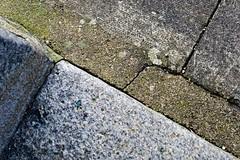 DSC04115 (LezFoto) Tags: granite cements pavingslabs aberdeen scotland texture cracks lines sonyrx100m3 interestingornot sonydigitalcompactcamera rx100iii rx100m3 sony dscrx100m3 cybershot sonyimaging unitedkingdom