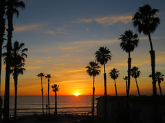 West Coast Adios (moonjazz) Tags: sunset california oceanside palm trees sun photography farwell adios hoizon pacific ocean classic sandiego sky sweet fabulous best moonjazz