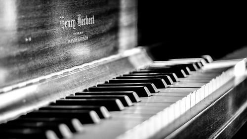 Henry Herbert Piano B&W