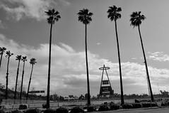 California Baseball (JustForSneaks Ent.) Tags: palmtrees anaheim angelsstadium majorleaguebaseball orangecounty baseball clouds southerncalifornia losangelesangels