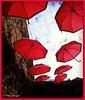 Sous un ciel de parapluies - Explore 3/02/2018 (bleumarie) Tags: hiver20172018 janvier2018 littoralméditerranéen mariebousquet photomariebousquet saintemarielamer stationbalnéaire suddelafrance catalogne france hiver horssaison littoral méditerranée mer plage pyrénéesorientales roussillon saintemarie sud village explore explore03022018 explore2018