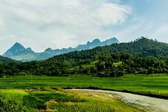 Pauza od hor (zcesty) Tags: řeka vietnam23 pole krajina hory vietnam dosvěta hàgiang vn