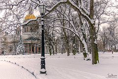 Saint Isaac's Cathedral (Tony_Brasier) Tags: st petersburg russia cathedral trees nikond7200 lovely location sigma snow lots 1750mm lights cars