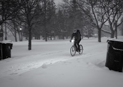 The Winter Warrior (Yewbert The Omnipotent) Tags: toronto canada cycling bikes biking winter warrior storm snow ice bw blackwhite night cold nikon d750 tamron 35mm
