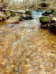 Creek (burton.amanda13) Tags: nature rocks water waterscape creeks creekswaterscape