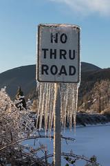No Thru Road (azcangal) Tags: ice icestorm frozen