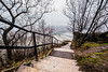 Going down (Bence Boros) Tags: sony alpha a77m2 a77ii sigma 1020mm f35 wideangle budapest hungary stairs danube liberty bridge trees path winter fog mist city shade