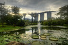 Gardens Lily Pond (henriksundholm.com) Tags: sunset daylight humid humidity pond landscape nature fountain architecture marinabaysands gardensbythebay gbgb grass reflections flowers clouds sky park garden trees supertreegrove rock hdr singapore southeast asia