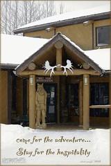 Come to Alberta, Canada (zawaski) Tags: alberta dogsledding foundryranch canmore naturallight noflash beauty rockymountains canada snow calgary love zawaski©2018 ambientlight dogdogs maddogenglishman fun canonefs55250mmf456isstm
