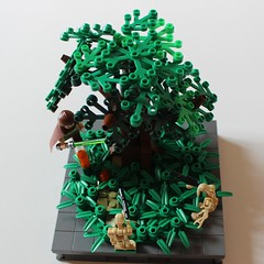 Qui-Gon Jinn (BrickAmazing) Tags: quigon jinn star wars brickamazing lego jedi droid arbre feuille