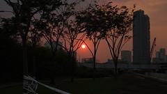 DSC00236 (tran.sonit) Tags: thiênnhiên phongcảnh mặttrời sun landscape