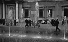 TriX400MO025 Palazzo Ducale Modena (cristiano17c) Tags: leica m2 analogico summicron 35mm accademia modena kodak trix 400 fontana acqua piazza cadetti