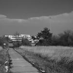 Seestadt_Lobau_21 thumbnail