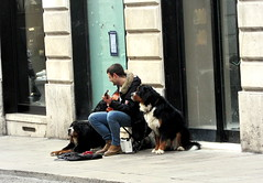 Three musicians (Nada BN) Tags: vicenza italy people business musicians socialphotography streetphotography dogs
