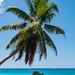 Isaland paradise Seychelles islands