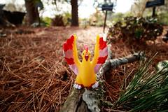 Moltres (firecloak) Tags: pokemon figure figurine moltres