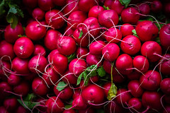 Radishes (King Grecko) Tags: agriculture farm newyork red color cuisine diet farmer farmersmarket farming food fresh freshfish gastronomy healthy ingredients market nutrient nutritious organic produce salad vegetables vibrant