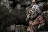 Fear of the dwarf (Nicolas Rouffiac) Tags: dwarf nain dwarves nains jadin garden fear peur terreur terror phobie phobia dark