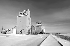 Mossleigh in mono (Len Langevin) Tags: alberta prairie grainelevator sentinel rural decay traintracks vanishingpoint monochrome blackandwhite nikon d7100 tokina 1224