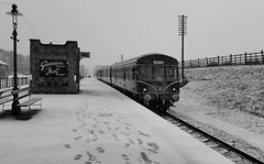 The Class 101 DMU arriving at Quorn & Woodhouse with a return working to Loughborough, from Leicester North. 21 01 2018 (pnb511) Tags: greatcentralrailway trains railway dieselmultipleunit class101 snow bw blackandwhite dmu track telegraph pole lamp