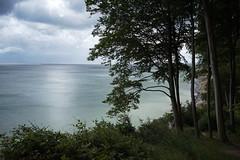A Cloudy Day (Stefan Zwi.) Tags: rügen ostsee balticsea landscape water wasser sun sonne buchen tree forest