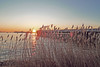P1060792hshs (hans hoeben) Tags: docking tanker morning glow somtrans belgium sunrise west harbor amsterdam holland bow truster panasonic lx3 harbot adm vessel