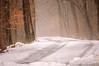 Waywayanda Road Less Traveled_0197 (smack53) Tags: smack53 road snow snowfall snowscape winter wintertime winterseason winterscenery wintry trees misty fog foggy waywayandastatepark vernon newjersey nikon d100 nikond100 scenery scenic