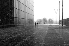 By crossing the cold place (pascalcolin1) Tags: paris13 homme man woman femme neige snow bnf froid cold place photoderue streetview urbanarte noiretblanc blackandwhite photopascalcolin 50mm canon50mm canon