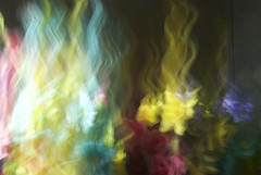69 (Jessica_Peterson) Tags: paintingwithmycamera paintingwithlight longexposure flowers colorful
