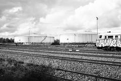 Rotonde noir et blanc