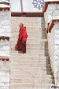 Drepung Monastery, Lhasa, Tibet 哲蚌寺 (cattan2011) Tags: 拉萨 西藏 traveltuesday travelphotography travelbloggers travel streetpicture streetphoto streetphotography streetart landscapeportrait landscapephotography landscape drepungmonastery lhasa tibet 哲蚌寺 stairs monk