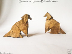 Seconde vie Lévriers Bakhmulls Assis - Barth Dunkan. (Magic Fingaz) Tags: anjing barthdunkan chien chó dog gremlins hond hund köpek origami perro pies пас пес собака หมา 개 犬 狗
