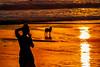 A gift from the Dog (BeNowMeHere) Tags: ifttt 500px sunset beach travel sun coastline silhouette horizon wave dawn dusk over water dog bali photo island indonesia seminyak taking benowmehere