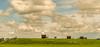 Typical Dutch landscape. (Alex-de-Haas) Tags: 70200mm bootcamprun d5 dutch dutchies geestmerambacht holland langedijk nederland nederlands nikkor nikon noordholland bootcamp candid conquering dirt dirty endurance evenement event fit fitdutchies fitness fun hardlopen joggen jogging mensen modder mud obstacle obstakel overwinnen people plezier recreatie recreation rennen renner renners run runner runners running sport sportief sportiviteit sporty summer team teamspirit teamgeest vies volharding zomer