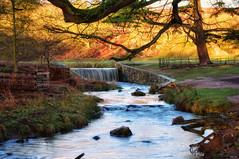 Fading light! (Nina_Ali) Tags: longexposure brook waterfall 7dwf bradgatepark leicestershire backlit winter2018