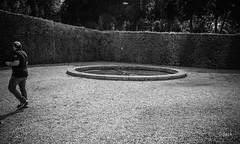en passant par Vaux le Vicomte (Jack_from_Paris) Tags: jpr7613d800ebw nikon d800e nikkorafs24mmf14ged 24mm ligthroom capture nx2 wide angle prime lens noiretblanc bw monochrom vaux le vicomte france fouquet maincy parc château castle jardin regard promenade bassin gravier