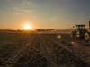 "Bringing ""Em Home (TuthFaree) Tags: autumn fall dust lensflare sunset johndeere georgia swga ga crops farming agriculture tractor harvest peanuts"