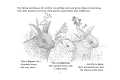 AsterD (Alex Hiam) Tags: bunnies rabbits bunny aster yarrow goldenrod wildflowers layout text childrens story type