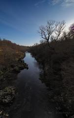 M2260714 M2260716 E-M1ii 7mm iso200 f8 1_1250s SingleAF (Mel Stephens) Tags: 20180126 201801 2018 q1 10x16 5x8 tall uk scotland olympus mzuiko mft microfourthirds m43 714mm pro omd em1ii ii mirrorless landscape water river north esk scape