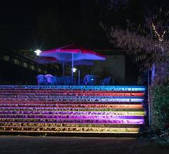 Parkleuchten 2018  -20 (Franiko Foto) Tags: gruga park essen parkleuchten licht farbe
