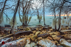 MKE Ice Jungle (andrewslaterphoto) Tags: boulder boulderpoint clouds greatlakes ice lakemichigan landscape milwaukee nature outdoors rocks sunrise trees water winter cold frozen freeze canon 5dmarkiii freezing travelwisconsin discoverwisconsin wi mkemycity mke snow