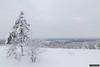 Finngruvorna view (kentkirjonen) Tags: canon 80d sweden sverige ue wood trä snow snö view vy finngruvorna finngruva pine tall fir gran birch björk frost cold winter vinter